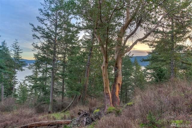 278 Cascade Wy, Orcas Island, WA 98245 (#1555891) :: Keller Williams Western Realty