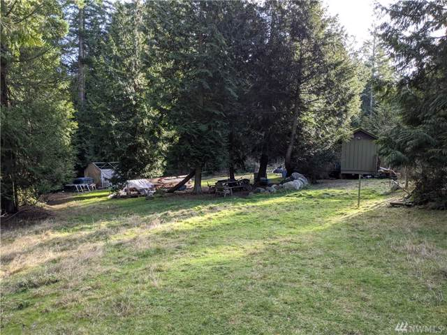 394 Pavey Blvd, Lopez Island, WA 98261 (#1556299) :: NW Home Experts