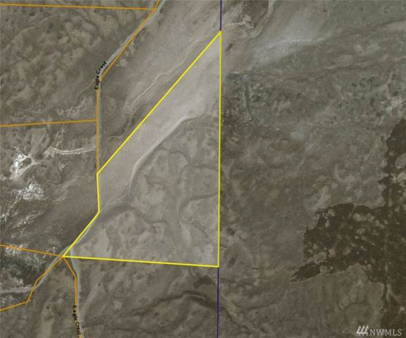 147 Eagle Springs Ranch, Wilson Creek, WA 98860 (#1557219) :: Northwest Home Team Realty, LLC