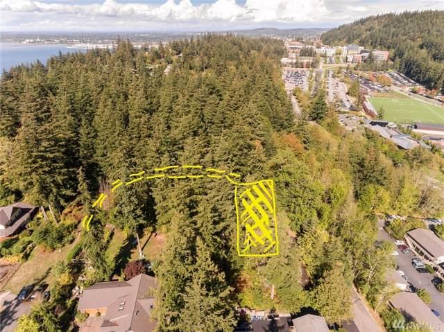 0 Ridgeway Dr, Bellingham, WA 98225 (#1558012) :: Liv Real Estate Group