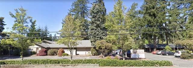 19718 68th Ave W B, Lynnwood, WA 98036 (#1558402) :: Canterwood Real Estate Team