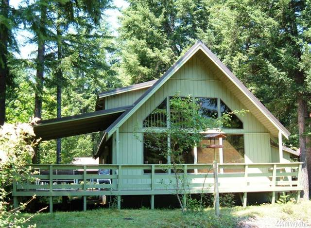 204 Mountain View Dr, Packwood, WA 98361 (#1558667) :: Center Point Realty LLC
