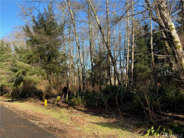 256 Fisher Ave NE, Ocean Shores, WA 98569 (#1558670) :: Tribeca NW Real Estate