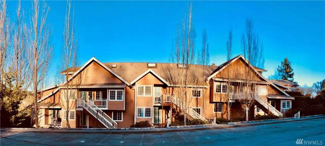 740-unit 7 Guard St #7, Friday Harbor, WA 98250 (#1558921) :: Crutcher Dennis - My Puget Sound Homes
