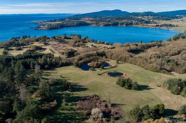 6 Montrose Place, San Juan Island, WA 98250 (#1558935) :: The Kendra Todd Group at Keller Williams