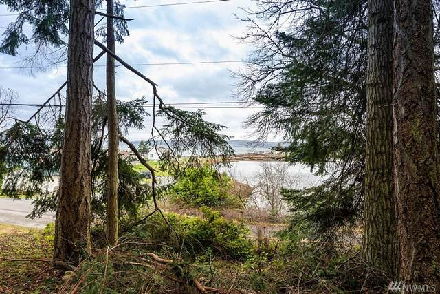 9 N Harrington Lagoon Road, Coupeville, WA 98239 (#1559040) :: Pacific Partners @ Greene Realty