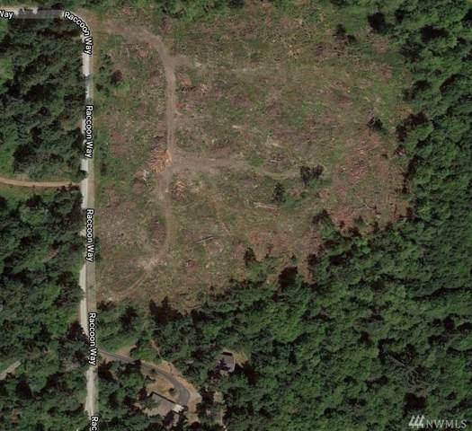 3-XXX Raccoon Wy, Oak Harbor, WA 98303 (#1559042) :: Tribeca NW Real Estate