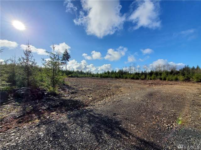 9999 Lot 2 Ledare Sp, Forks, WA 98331 (#1559089) :: Lucas Pinto Real Estate Group