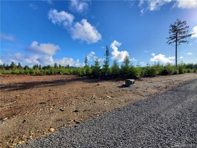 9999 Lot 1 Hennings Sp, Forks, WA 98331 (#1559109) :: Northwest Home Team Realty, LLC