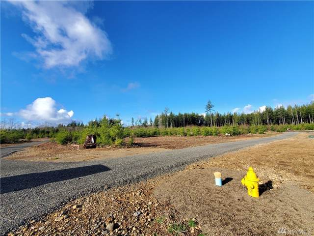 9999 Lot 2 Hennings Sp, Forks, WA 98331 (#1559115) :: Lucas Pinto Real Estate Group