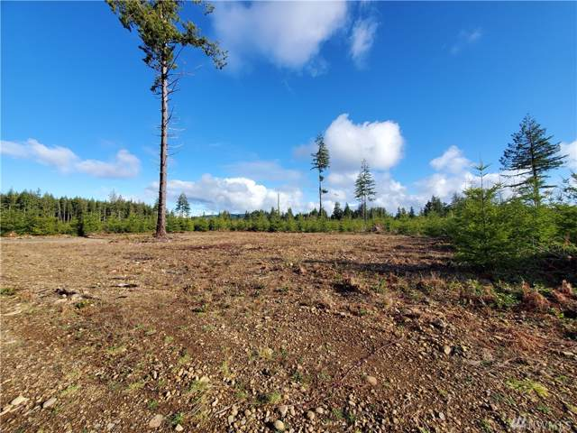 9999 Lot 4 Hennings Sp, Forks, WA 98331 (#1559501) :: Lucas Pinto Real Estate Group