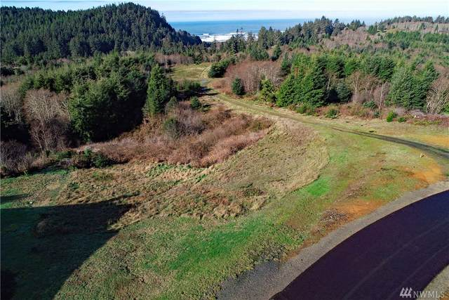 3050 Ocean View Ct, Ilwaco, WA 98624 (#1559704) :: Real Estate Solutions Group