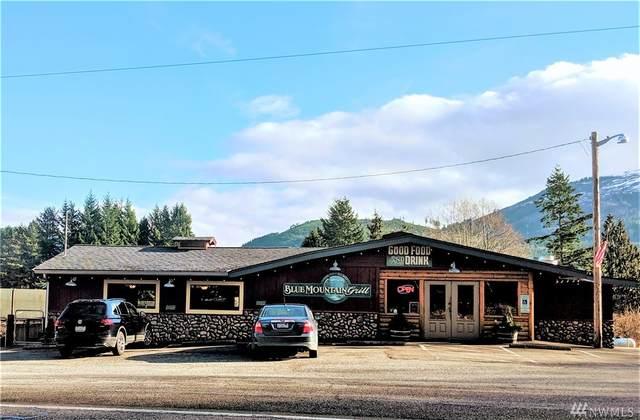 974 Valley Hwy, Acme, WA 98220 (#1559742) :: Ben Kinney Real Estate Team