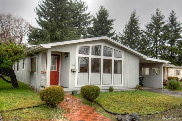 5227 Mt Green Lane SE #293, Lacey, WA 98503 (#1559849) :: Mary Van Real Estate