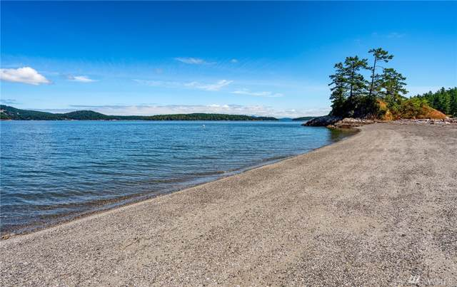 2787 Lopez Sound Rd, Lopez Island, WA 98261 (#1560566) :: The Kendra Todd Group at Keller Williams