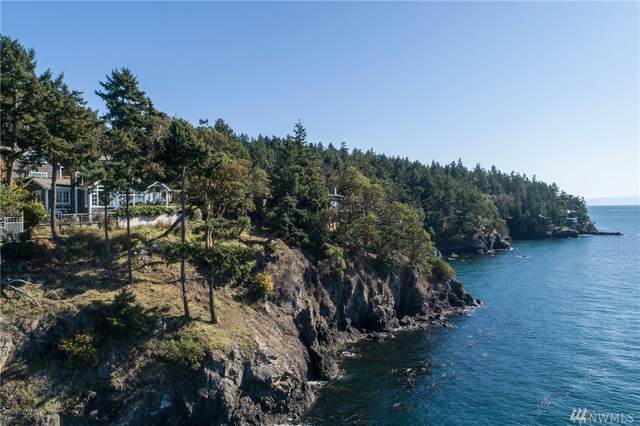 311 Madrona Dr, San Juan Island, WA 98250 (#1561034) :: The Kendra Todd Group at Keller Williams