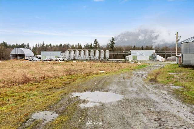 10272 Warfield Road, Sedro Woolley, WA 98284 (#1561368) :: Shook Home Group