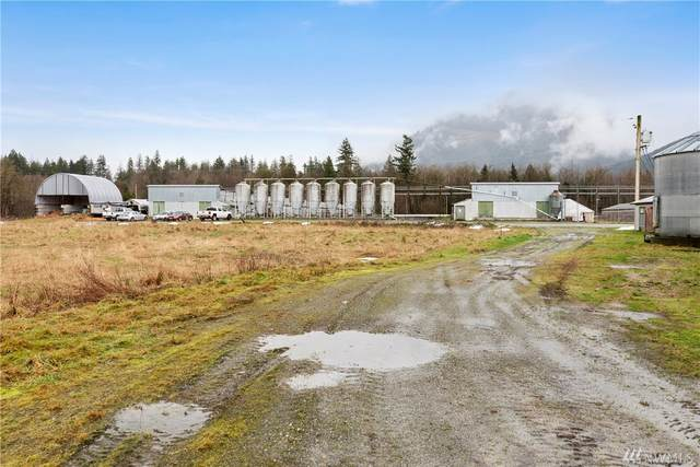 10272 Warfield Road, Sedro Woolley, WA 98284 (#1561368) :: Pacific Partners @ Greene Realty