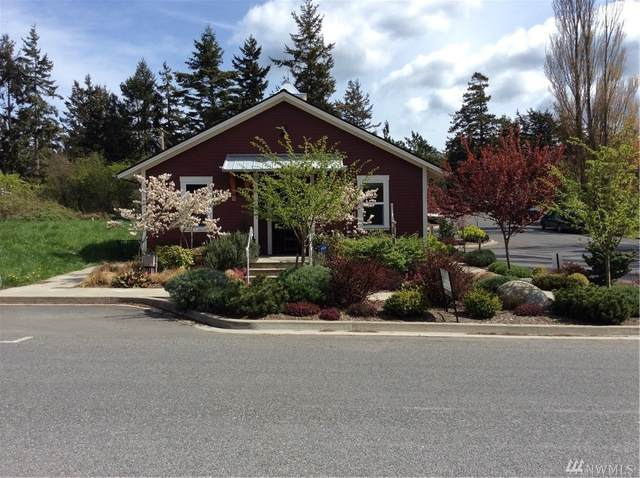 410 Prune Aly B, Orcas Island, WA 98245 (#1561688) :: Costello Team