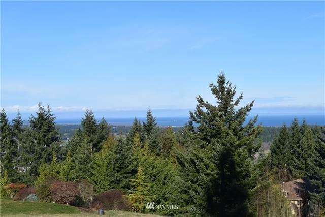 9 Fox Hollow, Sequim, WA 98382 (#1562392) :: Better Properties Real Estate