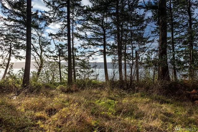 3338 Harbor View Dr, Langley, WA 98260 (#1563129) :: The Kendra Todd Group at Keller Williams