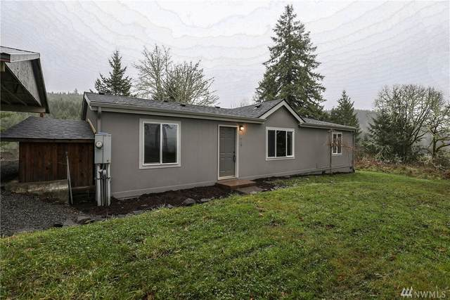 629 Curtis Hill Rd, Boistfort, WA 98532 (#1563835) :: Hauer Home Team