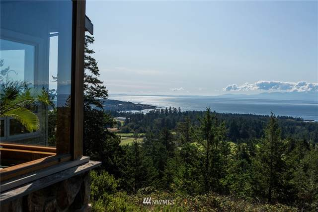 432 Botsford Lane, San Juan Island, WA 98250 (MLS #1563904) :: Community Real Estate Group