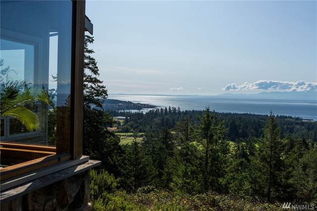 432 Botsford Lane, San Juan Island, WA 98250 (#1563904) :: The Kendra Todd Group at Keller Williams