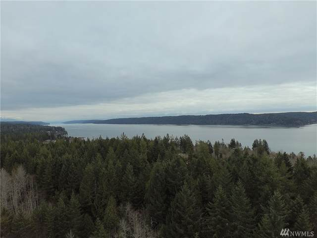 0 N Schoolhouse Hill Rd, Hoodsport, WA 98548 (#1564302) :: Record Real Estate