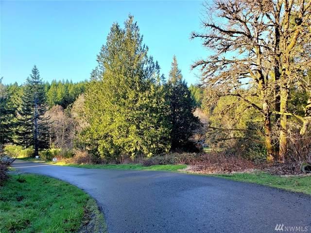 202-204 E Union Ridge Rd, Union, WA 98592 (#1565060) :: The Kendra Todd Group at Keller Williams