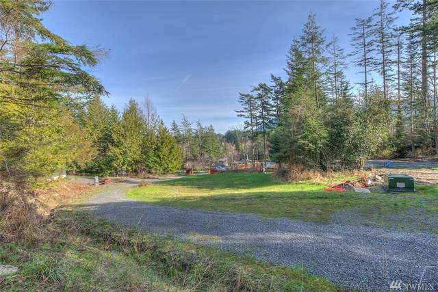 3 Wild Turkey Run, Orcas Island, WA 98245 (#1565313) :: Costello Team