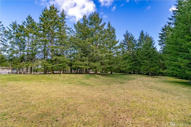 9999 Craig Rd, Sequim, WA 98382 (#1565503) :: KW North Seattle