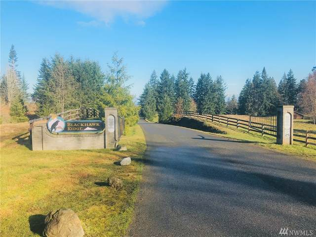 1351 Henry Boyd Road, Port Angeles, WA 98362 (#1565605) :: The Kendra Todd Group at Keller Williams