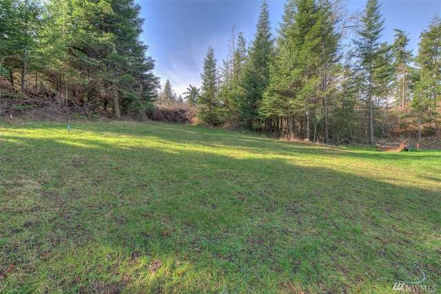 6 Wild Turkey Run, Orcas Island, WA 98245 (#1565887) :: Engel & Völkers Federal Way