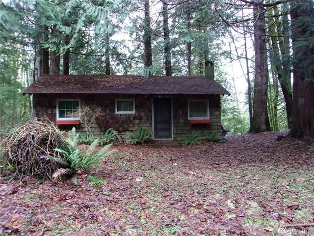 40 Elk Ct, Brinnon, WA 98320 (#1566235) :: Mike & Sandi Nelson Real Estate