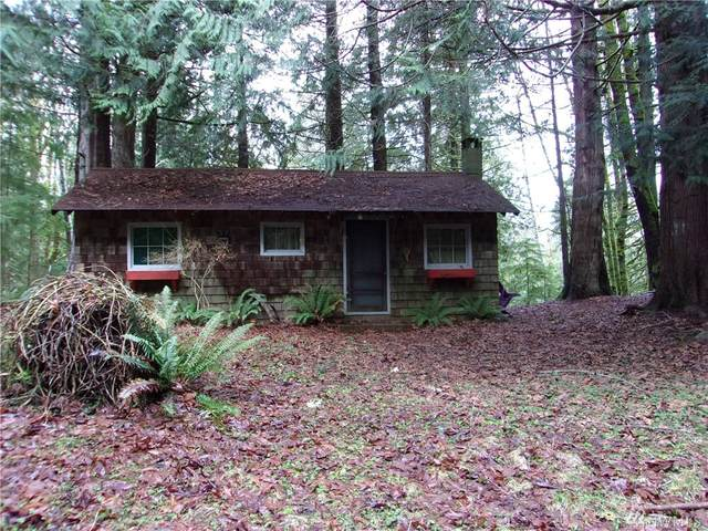 40 Elk Ct, Brinnon, WA 98320 (#1566235) :: Sarah Robbins and Associates