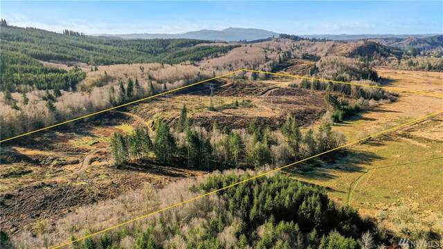 0 Mox Chehalis Rd, McCleary, WA 98577 (#1566532) :: Record Real Estate