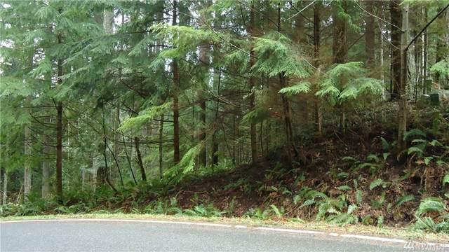5 Pinto Creek Lane, Bellingham, WA 98229 (#1566535) :: Mosaic Realty, LLC
