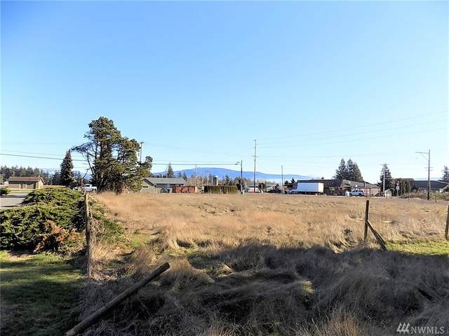 1496 E Badger Rd, Lynden, WA 98264 (#1566717) :: Keller Williams Western Realty