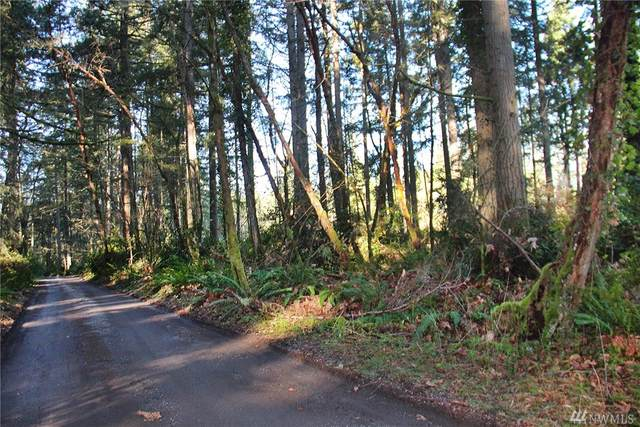 13-XXX SW Caster Rd, Vashon, WA 98070 (#1566935) :: Northwest Home Team Realty, LLC