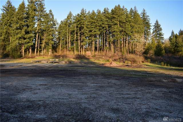 34409 S State Route 507, Roy, WA 98580 (#1567028) :: Ben Kinney Real Estate Team