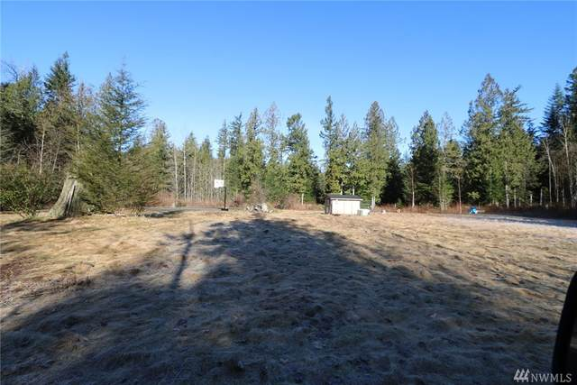 9481 Red Mountain Lane, Maple Falls, WA 98266 (#1567445) :: Engel & Völkers Federal Way