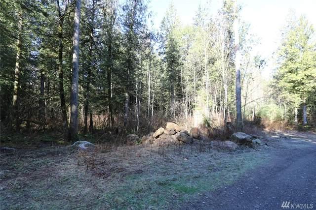 9521 Red Mountain Lane, Maple Falls, WA 98266 (#1567446) :: Engel & Völkers Federal Way