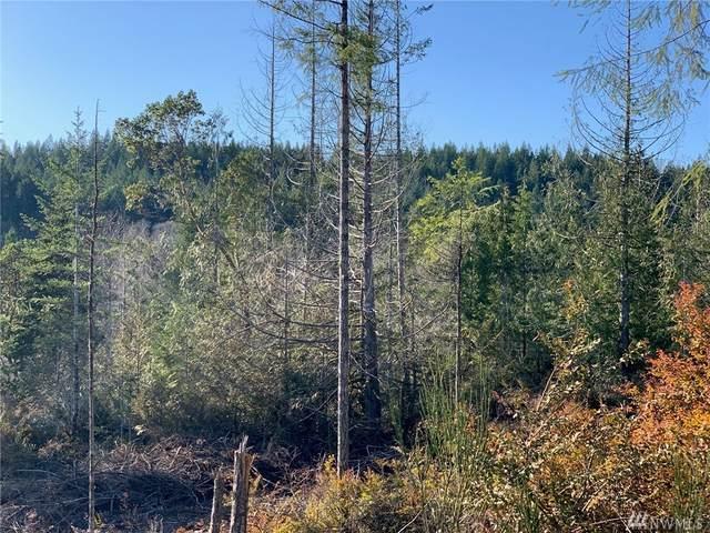 0-xxx E Eagle Point Dr, Shelton, WA 98584 (#1567531) :: Lucas Pinto Real Estate Group
