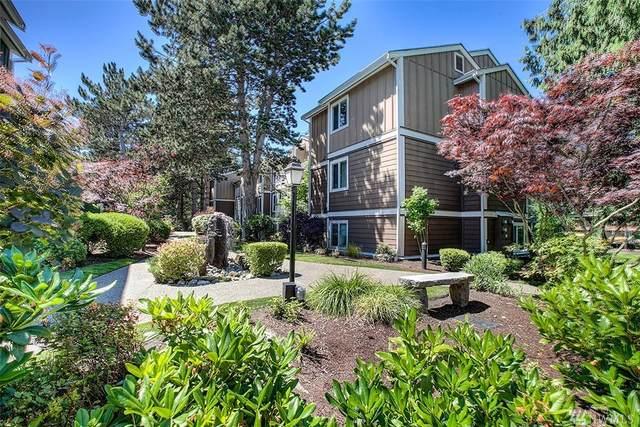300 N 130th St #4102, Seattle, WA 98133 (#1567661) :: Mosaic Realty, LLC