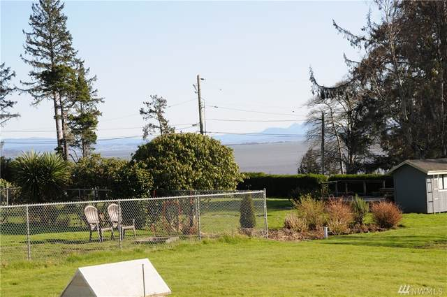 1114 Rose Ave NE, Ilwaco, WA 98624 (#1567680) :: Ben Kinney Real Estate Team