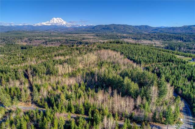 43201 Roedomsky Rd E, Eatonville, WA 98328 (#1568382) :: The Kendra Todd Group at Keller Williams