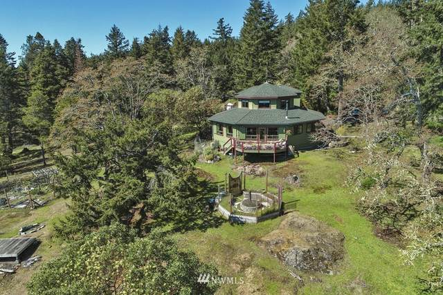 595 Shooting Star Lane, San Juan Island, WA 98250 (#1569040) :: Costello Team