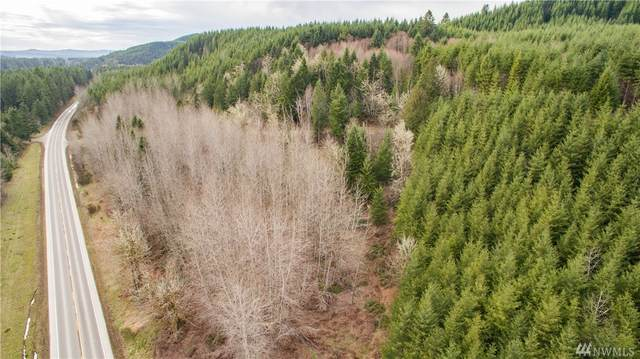 0 Sr 504 Highway, Toutle, WA 98649 (#1569865) :: Alchemy Real Estate