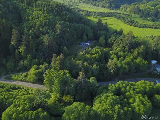 114 W Valley, Skamokawa, WA 98647 (#1569867) :: The Kendra Todd Group at Keller Williams